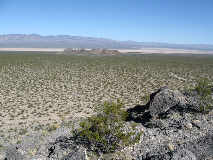 Ivanpah Valley, Mojave Desert, California.  Photo courtesy of Basin and Range Watch.  This place will be destroyed by a solar energy project.
