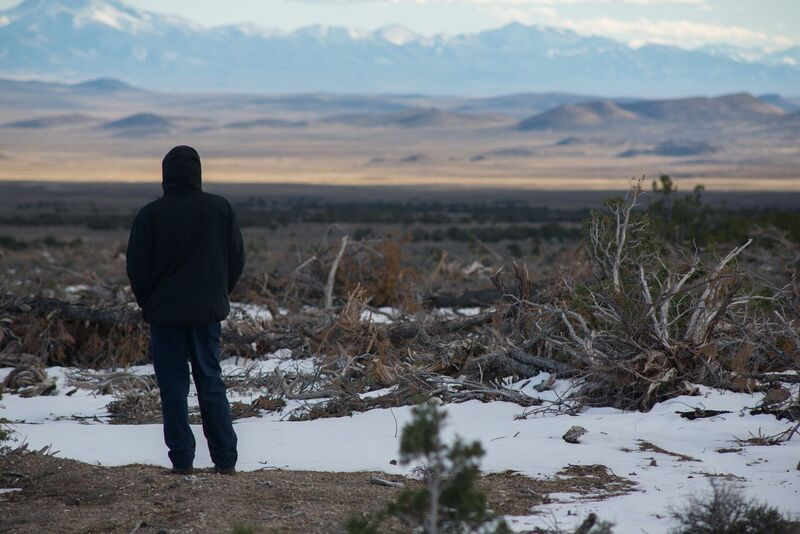 Image: Will Falk surveying the devastation of Pinyon-Juniper deforestation (Photo: Max Wilbert)
